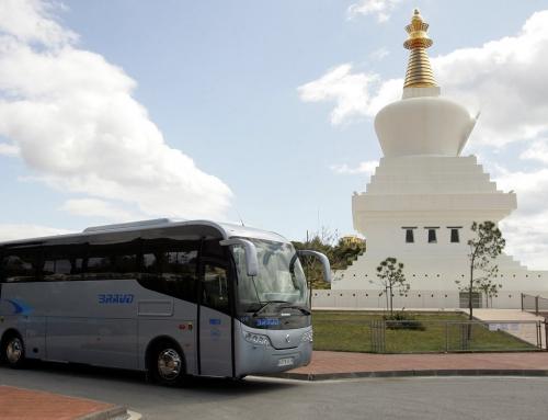Bus V.I.P